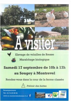 Visite d'un élevage de volailles de Bresse